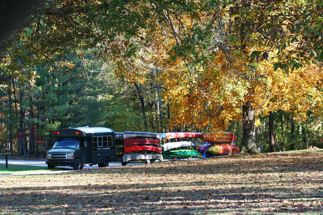Autumn Boat Boats Bus Canoe Canoes Color Fall Horizontal Mode Of Transport No People Outdoors Park Transportation Tree
