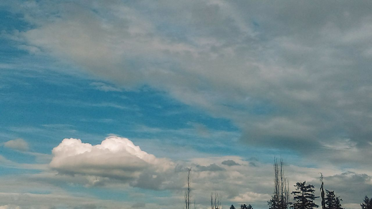 Eyeem Clouds Eyeem Clouds And Sky Shades Of The Sky Shades Of Blue Shades Of Nature Shades Of Sky From My Point Of View Getty Images Shades Of White Eyeem Market White Clouds EyeEm Worthy White Album Clouds And Sky My Cloud Obsession☁️