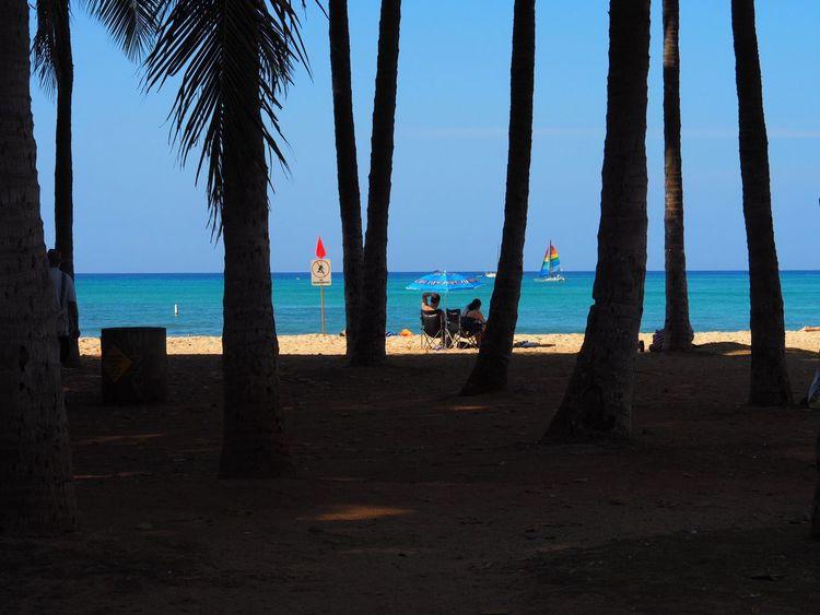 Sea Horizon Over Water Water Beach Nature Blue Sky Clear Sky Tree Scenics Beauty In Nature Sand Outdoors Vacations Hawaii Waikiki Beach Waikiki Honolulu  Memory Of Travel Travel Travelers Olympus Om-d E-m10 Beach Umbrella Yacht