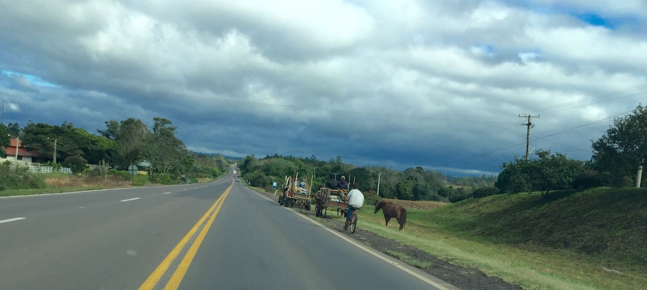 Beside the road... Roadside Envision The Future Oxcart Traffic Horse Bycicle People Walking  Cars On The Road!! Trees And Bushes House Contrasts Cloudy Sky ☁️
