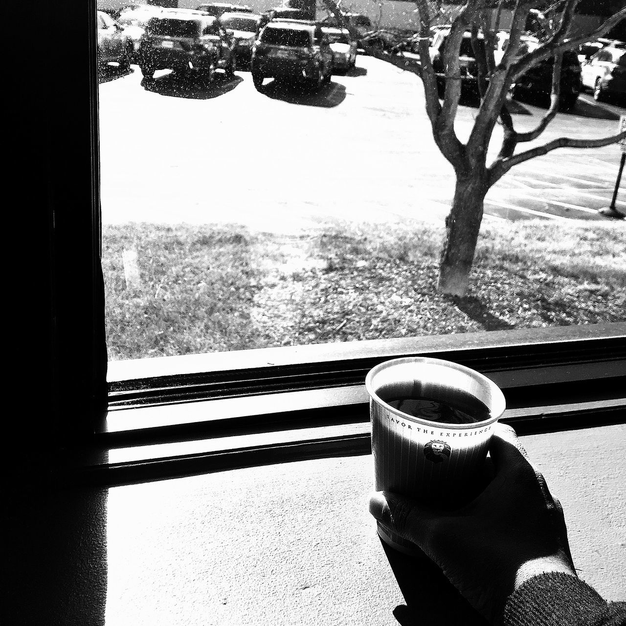 window, vehicle interior, day, coffee cup, transportation, drink, coffee - drink, real people, food and drink, refreshment, one person, tree, mode of transport, sunlight, human hand, human body part, indoors, close-up, nature, freshness, people