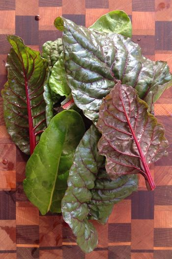 Close-up Green Color Leaf Leaf Vein Nature No People Swiss Chard Vegetable