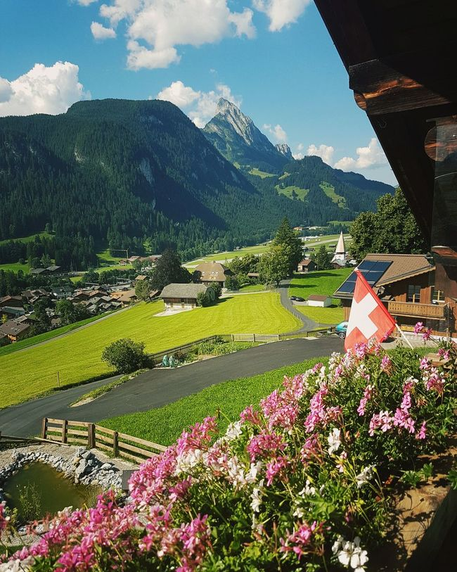 Taking Photos On A Break Landscape Switzerland Hanging Out Enjoying Life Summer Nice Weather Flowerpower Beautiful Nature Fresh Air Good Times Beautiful Outside View From The Balcony Chalets Chalet Green Nature Mountains Mountainscape