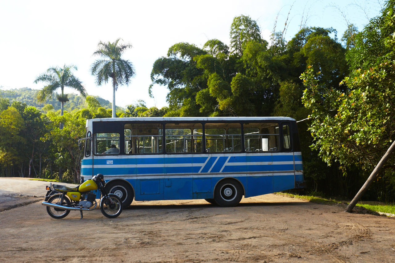 Banos del San Juan, Las Terrazas, Cuba Banos Del San Juan Cuban Bus Cuban Country Cuban Life Day Ecoresort Ecotourism Get Outside Green Growth Jungle Land Vehicle Las Terrazas Motorcycle Nature Nature No People Outdoors Palm Tree Secluded  Sky Swimming Transportation Tree
