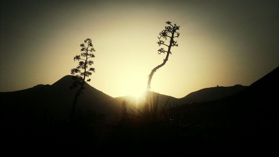 Sunset_collection Pitas Sunset