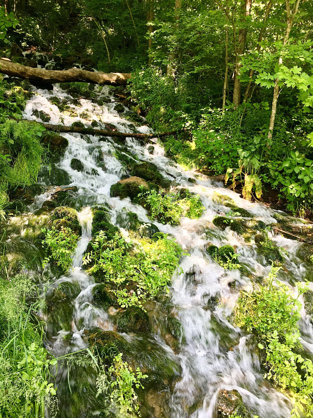 Big Springs Flowing Water Waterfall Water Nature Beauty In Nature Moss Natural Spring Water Motion Green Color Freshness Geodes Geode Naturalspring Waterfalls Tranquility Rocks Rocks And Water Natural Spring Flowing Water Tranquil Scene No People The Great Outdoors - 2017 EyeEm Awards Out Of The Box