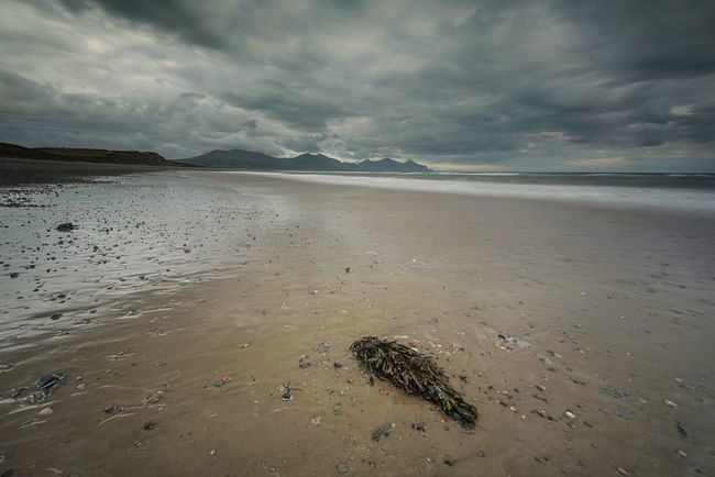 Moody Snowdonia Snowdonia Wales Beach Secluded Beach Secluded  Naturelovers Beautiful Nature 43 Golden Moments Fine Art Photography Landscape_photography Sea And Sky Seascape Sea View Mountains Mountain Range Moody Sky Stormy Sky Landscape Beach Walk Beachlovers