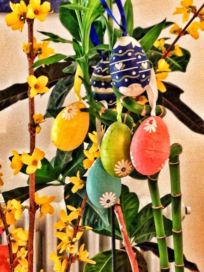 Happy Easter to all of you! Streamzoofamily From My Point Of View Taking Photos Easter Is Around The Corner