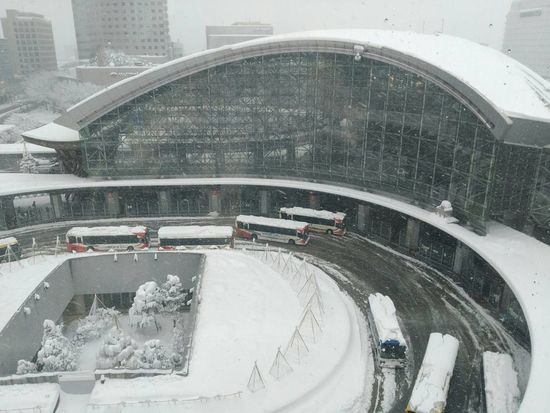 Snowy❄️ Winterscene Japanscenery Moment Outdoors 雪景色 Snowscenery 冬空 EyeEm Selects Kanazawa City,Japan Kanazawastation Winter Nature Lover