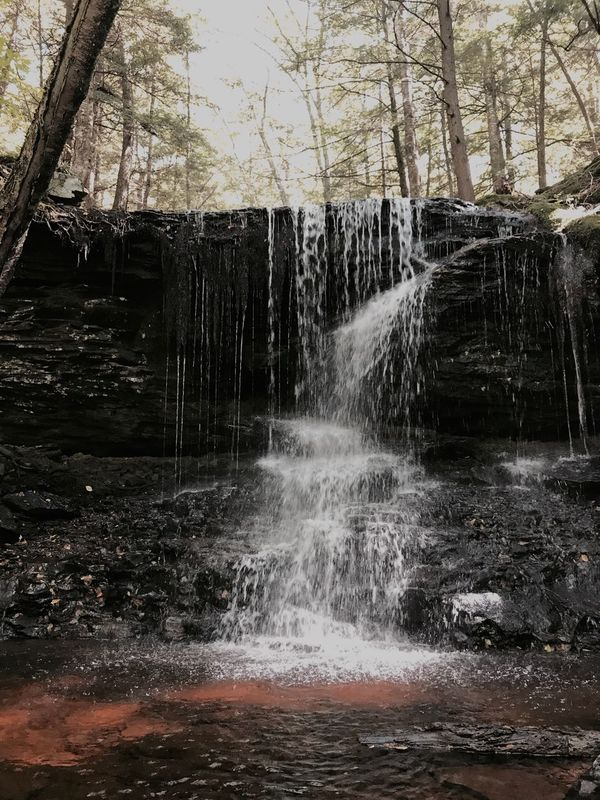 Waterfall Water Forest Nature No People Beauty In Nature Outdoors Day Hiking Adventure New York