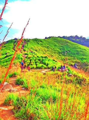 Broga Enjoying Life Taking Photos Malaysia