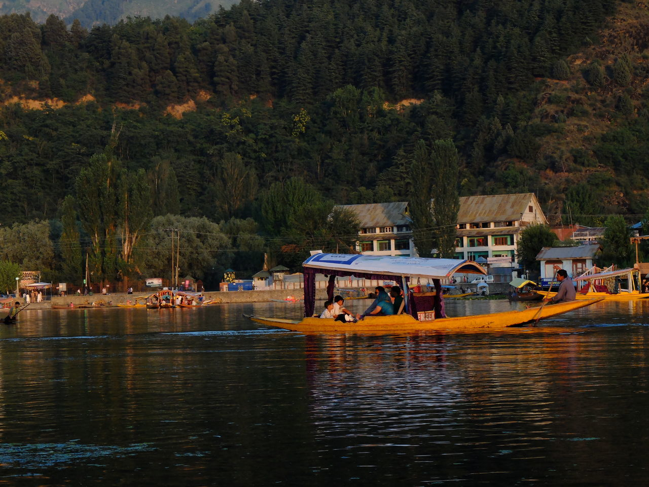 Beauty In Nature Boat Day Forest Growth Mode Of Transport Moored Nature Nautical Vessel No People Outdoors Sailing Scenics Sky Srinagar Kashmir Transportation Tree Water Waterfront