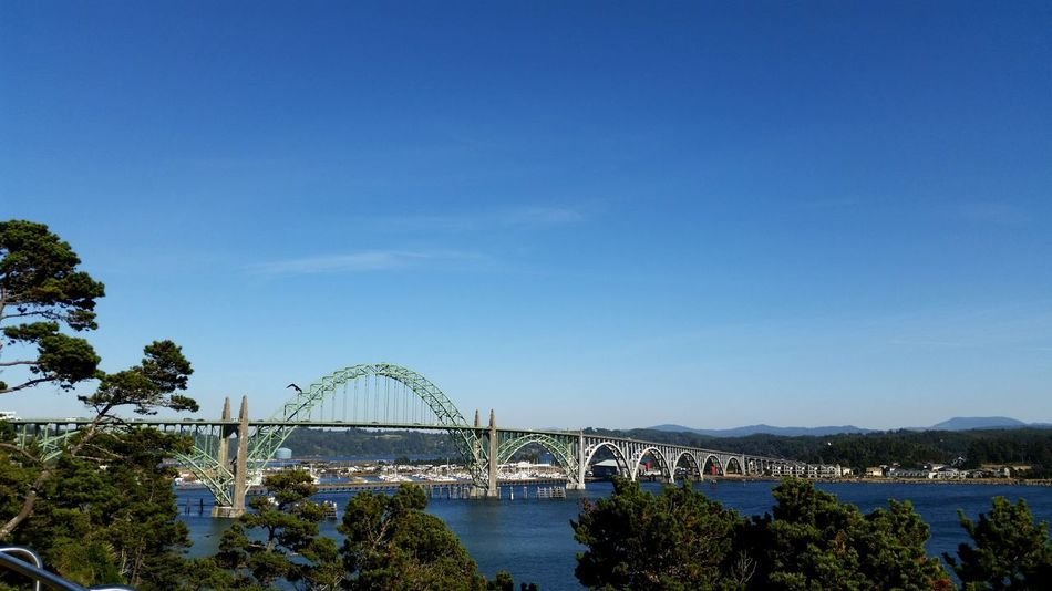 Yaquina Bay Bridge Newport Oregon Bay View Blue Sky Arches Trees Clear Sky Outdoors Travel Destinations Scenery Fall Days