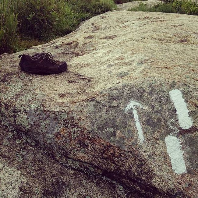 Bearmountain Lostshoes