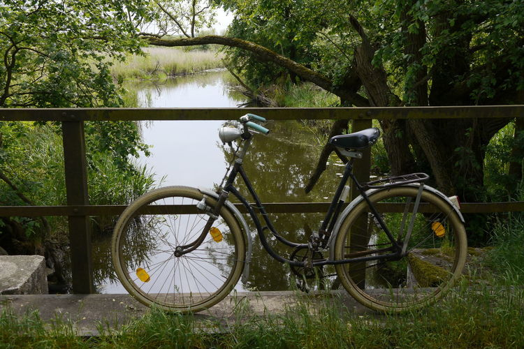 Schleuse Schwingsattel Antic Bike Bicycle Bicycle Rack Bike: Schwalb Bridge Day Grass Green Color Growth Land Vehicle Mode Of Transport Nature No People Outdoors Stationary Transportation Tree