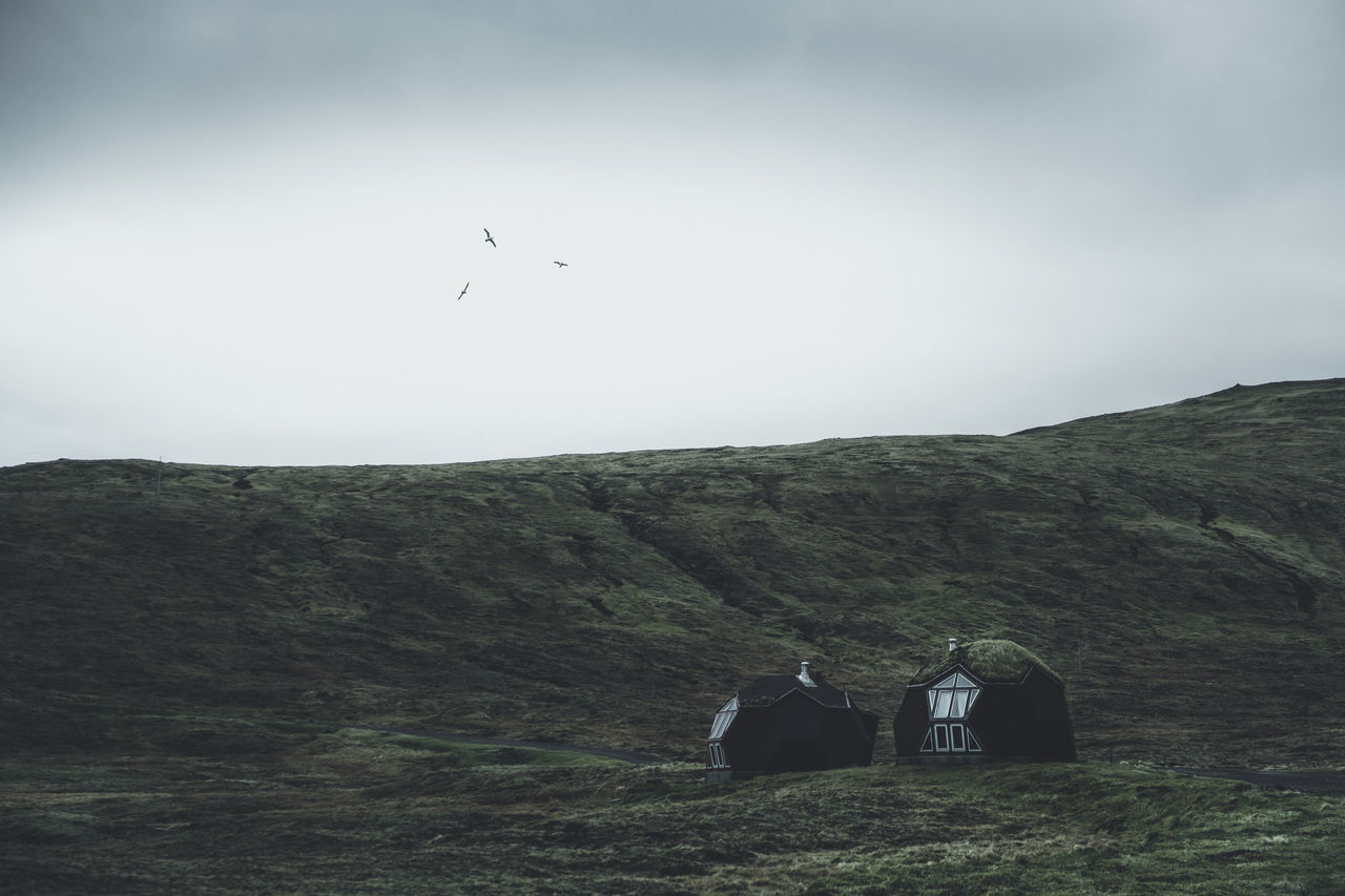 Living in nature. Location: Faroe Islands Equipment: Fujifilm X-T2 + XF18-55 F2.8-4 Architecture Houses Animals in the Wild beauty in Nature bird cottage day faroe islands flying färöer landscape leisure activity lifestyles mammal men mountain Nature outdoors scenics sky Standing togetherness tranquil scene Tranquility two people