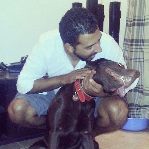 Dogs Mansbestfriend Cesare