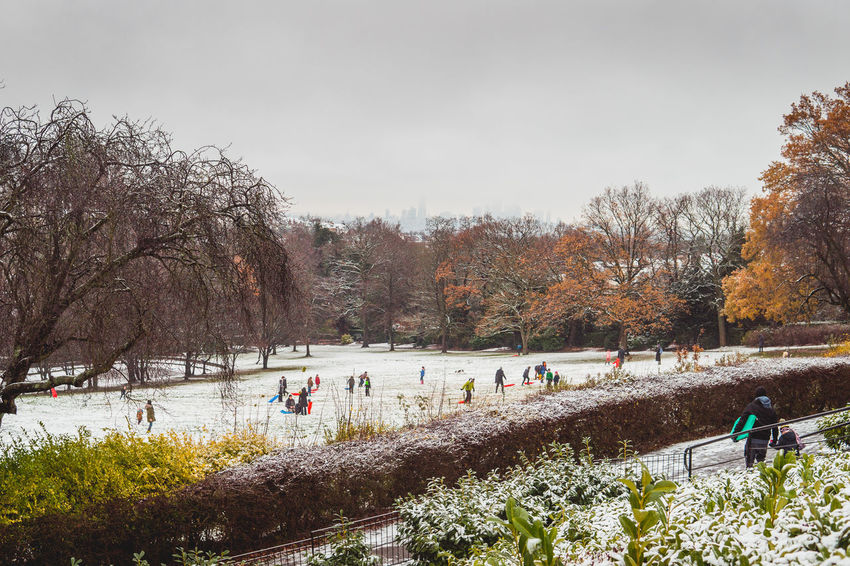 People sledging in the snow at Horniman Museum and Gardens in Forest Hill, South London Autumn Forest Hills Gardens LONDON❤ London Snowfall 2017 London Parks Sledging Trees Winter Wintertime England Field Forest Hill Hornimanmuseum London_only Londonlife Nature Outdoors Park People Snow