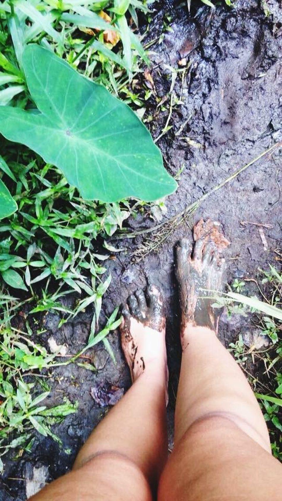Mud Muddywalk Nature EyeEm Nature Lover Nature Photography Beautiful Nature Embracing Nature Enjoying Life Hello World Glitch