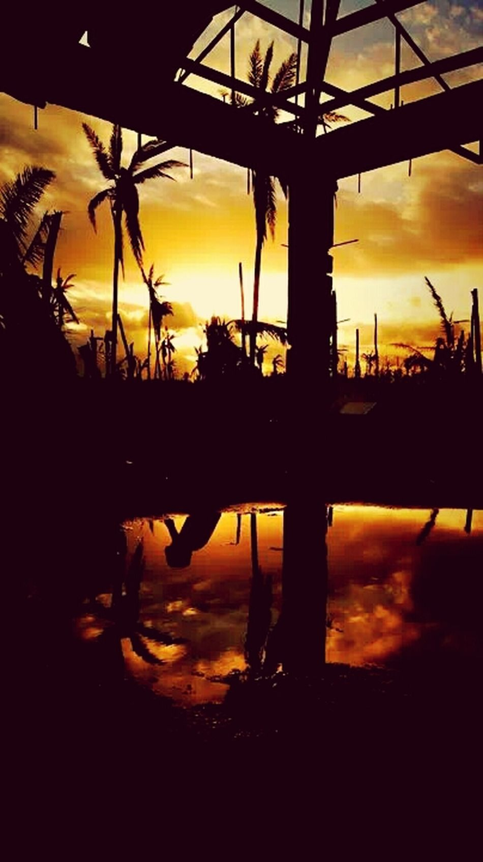 Philipines, Leyte. Dusk view from a distroyed country Batug. the feeling from being there and seeing the beauty of Nature. A child sitting there looking how volunteers rebuild a garden for the village. Visual Statements Your Photo For Social Change By PhotoPhilanthropy