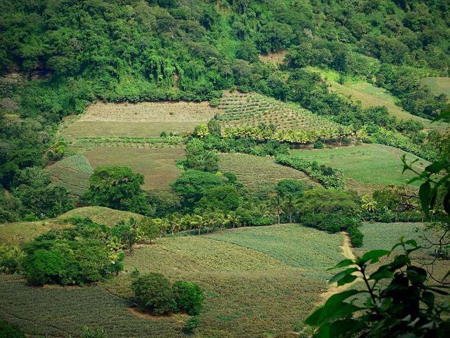 Paradise Nicaragua Nicaraguan Nicaraguense