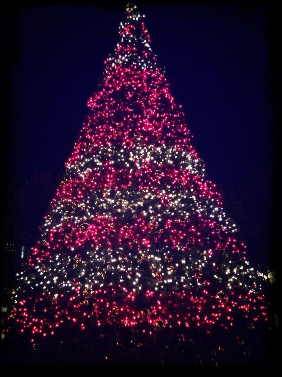 Earlier merry christmas!