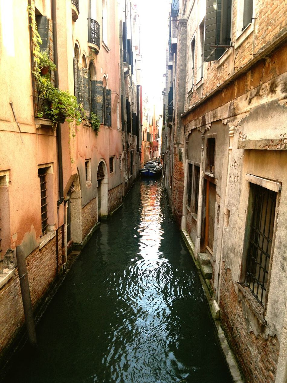 Italy Italia Europe Trip Arquiteture Flowers Water Veneza Venice Venezia Viewstreet Viewofthecity Arquitecture Viewfromthestreet Water_collection Taking Photos Europe Arquitectura Arteurope Venice, Italy Italian Italy Photos Italy❤️ Venezia Venice Vacation