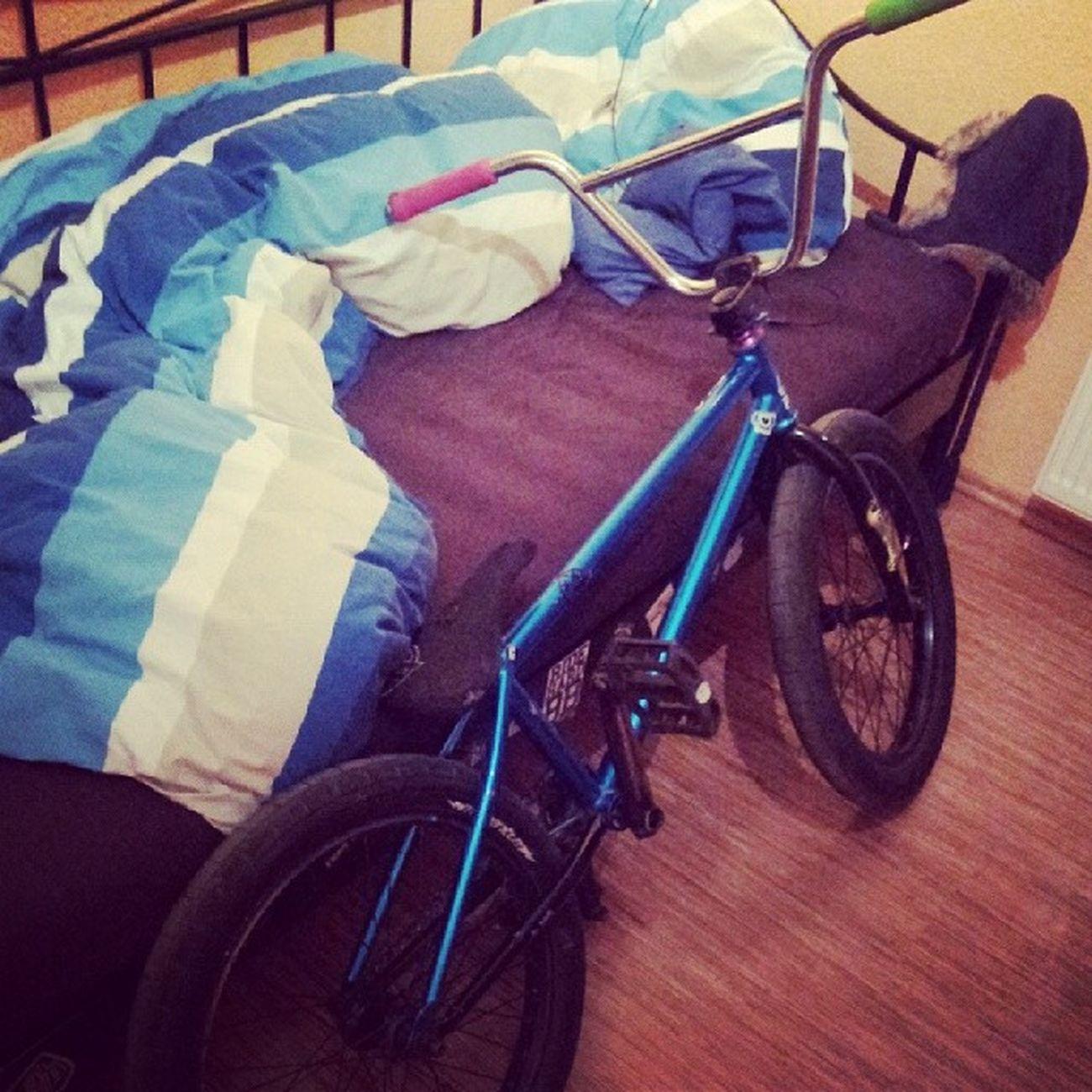 Morgen fette roll session zittau !! Bmx  Lhd Chill Proper bikeswtpbedgoodnight
