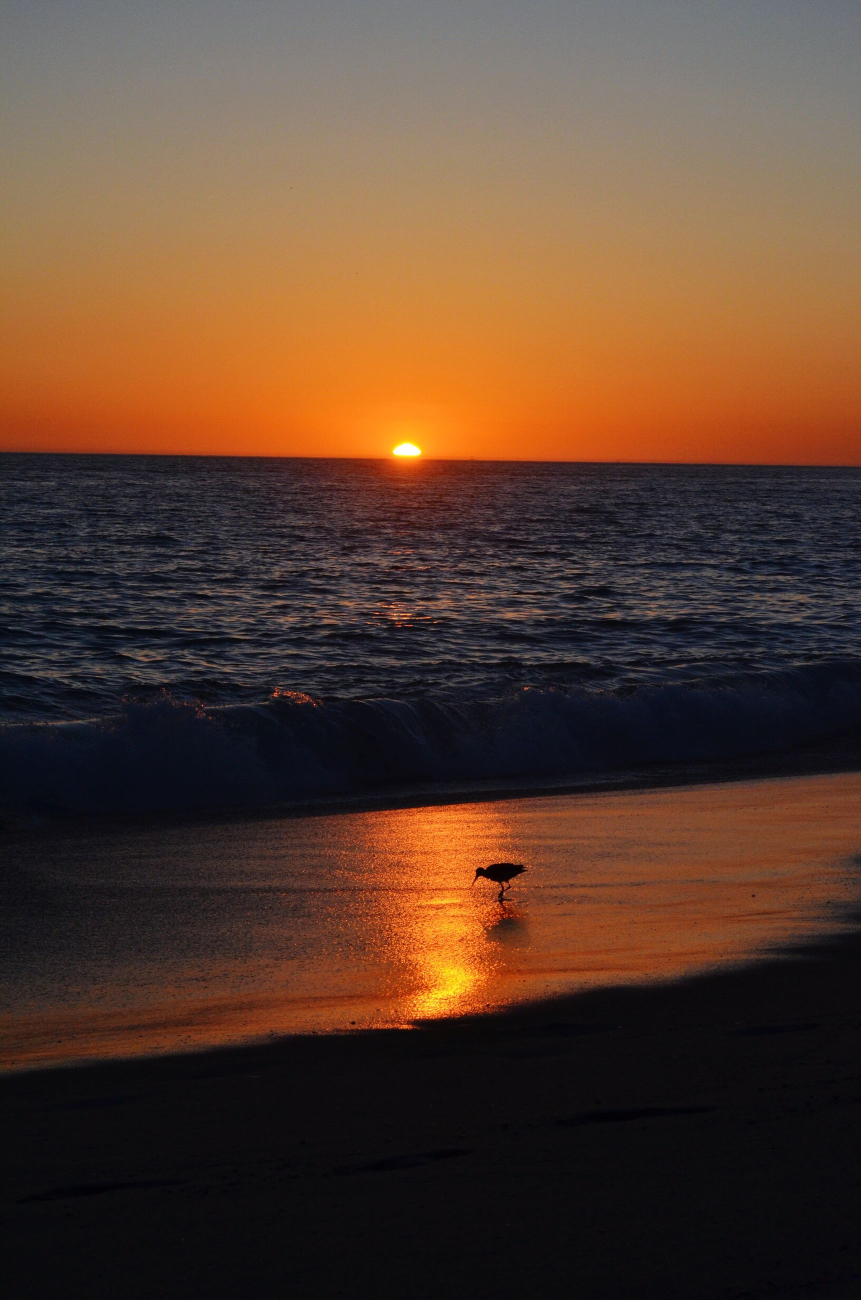 sunset, sea, horizon over water, water, orange color, sun, scenics, tranquil scene, beach, beauty in nature, tranquility, silhouette, clear sky, reflection, idyllic, shore, nature, copy space, sky, sunlight