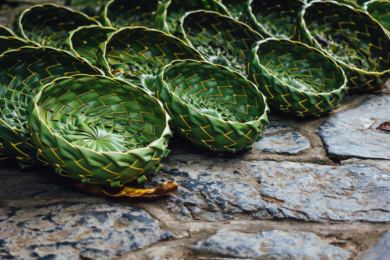 Bowl Cactus Close-up Craftwork Cuba Collection Cuban Souvenir Cuban Style Freshness Green Color Handmade Leaf Nature No People Outdoors Plant Souvenir