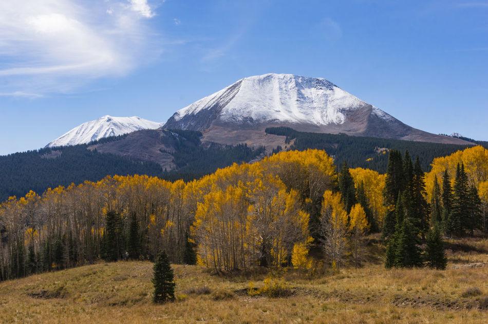 Beautiful stock photos of fuchs, Autumn, Moab, United States, beauty In Nature