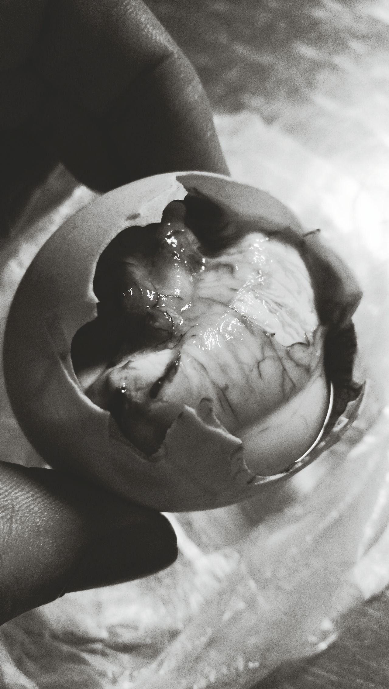 Food BalotinthePhilippines! Balot Egg Photooftheday Phoyography Foodpornasia Randompics