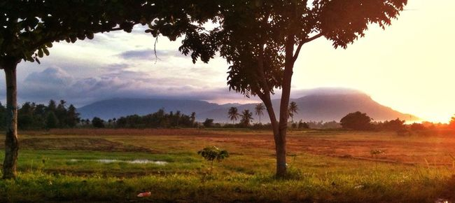 Pagi tadi dalam perjalanan berangkat kerja menuju Banjarmasin, begitu indah pegunungan meratus