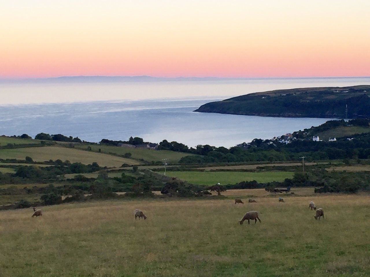 Running Laxey Sea And Sky Isle Of Man Summer Sunset #sun #clouds #skylovers #sky #nature #beautifulinnature #naturalbeauty Photography Landscape [ Sheep