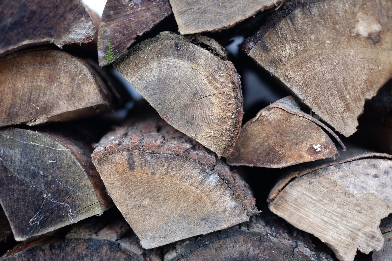 Arrangement Backgrounds Close-up Day Deforestation Forestry Industry Full Frame Large Group Of Objects Log Nature No People Outdoors Stack Textured  Timber Woodpile