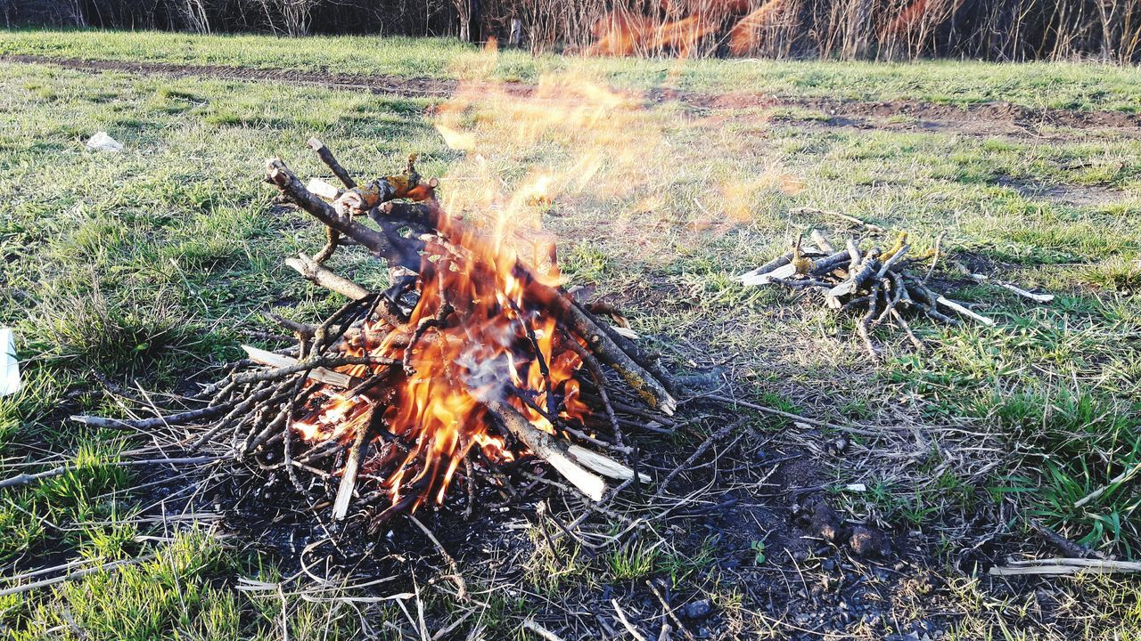 fire - natural phenomenon, burning, flame, heat - temperature, bonfire, field, grass, outdoors, campfire, no people, day, log, motion, nature, forest, fire pit, close-up