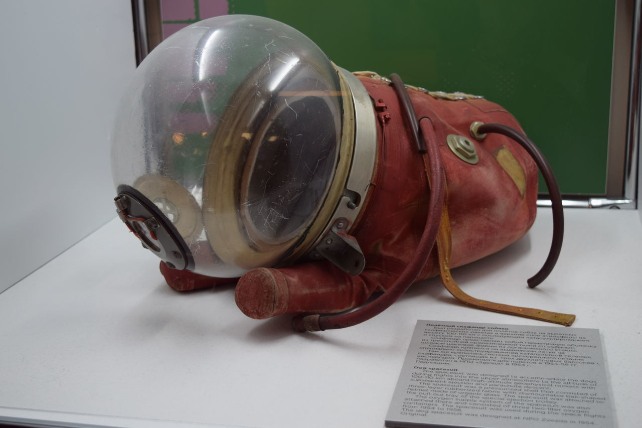 the armor for dog Armor Close-up Dog Exhibition Futuristic Museum No People Science Space Space And Astronomy Space Exploration