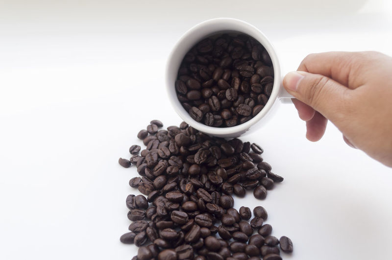 Adult Adults Only Breakfast Brown Close-up Coffee Coffee Bean Cup Directly Above Drink Food Food And Drink Freshness Healthy Eating Holding Human Body Part Human Hand Indoors  One Person Only Women People Refreshment Table White Background White Cup