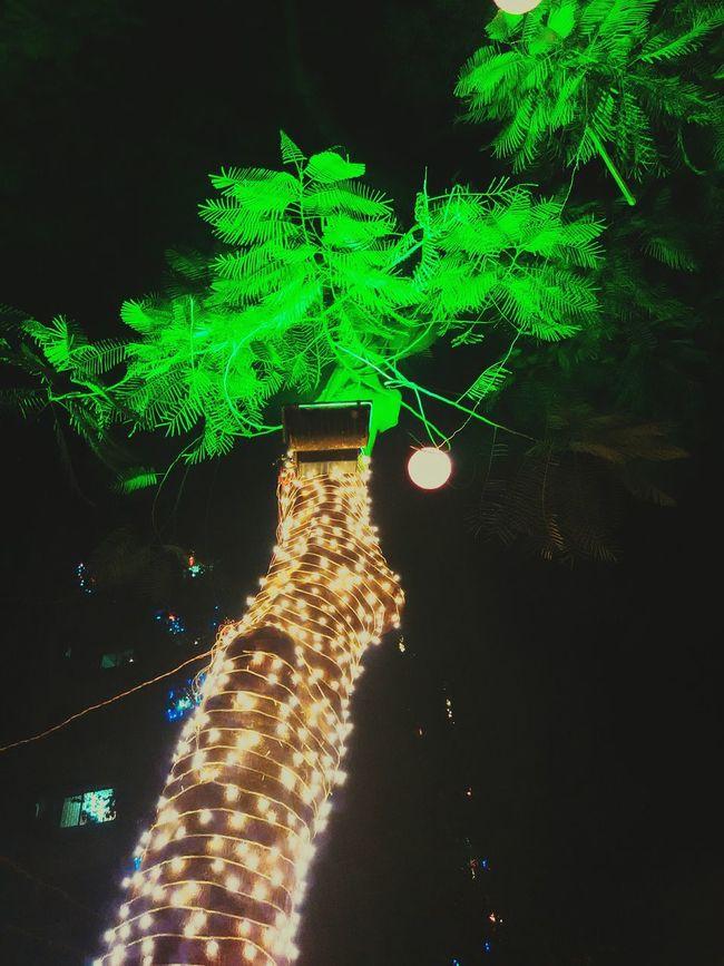 Diwali 2015 Diwali Lights Go Green Night Lights Mobilephotography Showcase: November Mumbai Meri Jaan City Life Citys At Night Natures Diversities