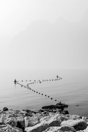 Fishing nets in the waterl Atmospheric Mood Black And White Black And White Photography Fishing Fishing Net Gardasee Lago Di Garda Lago Di Garda, Italy Monochrome Monochrome Photography Nets Water