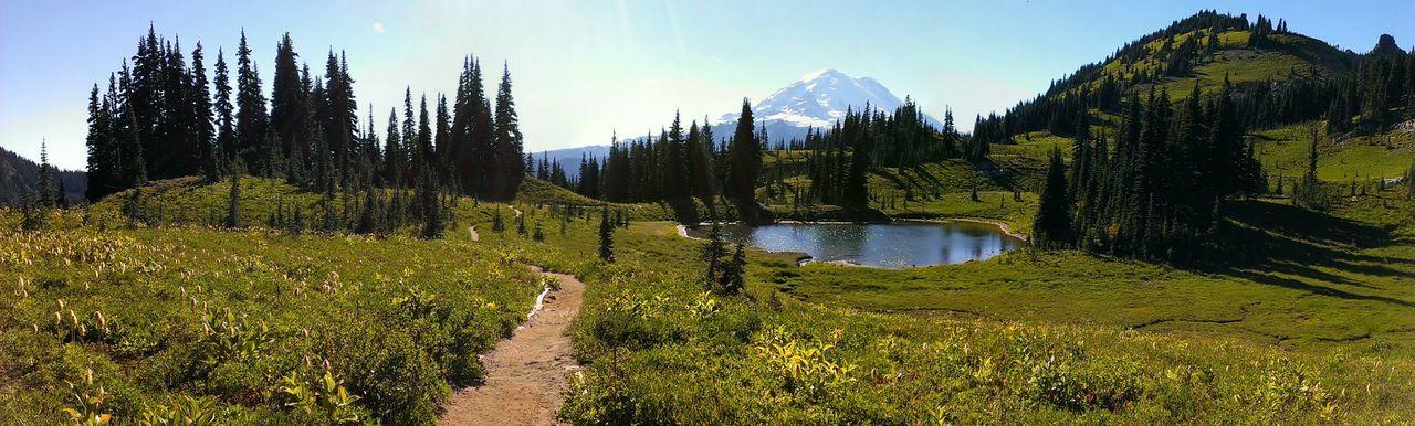 Naches Peak Trail Mt. Rainier Nature