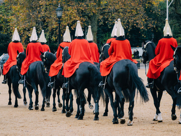 EyeEm LOST IN London Whitehall Household Division Wellington Arch Horse Guards Cavern Hyde Park Barracks Household Cavalry Regiment Household Cavalry Household LONDON❤ London Saint James Park Horse Guards Parade London Horse Guards Parade Life Guards Horse Guards  Postcode Postcards