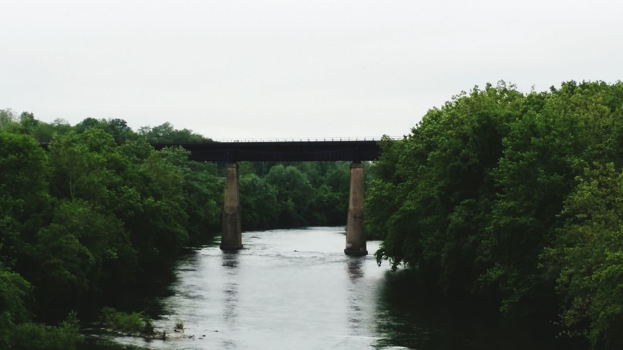 bridge - man made structure, connection, built structure, architecture, river, no people, nature, tree, outdoors, day, below, covered bridge, water, bridge, forest, scenics, beauty in nature