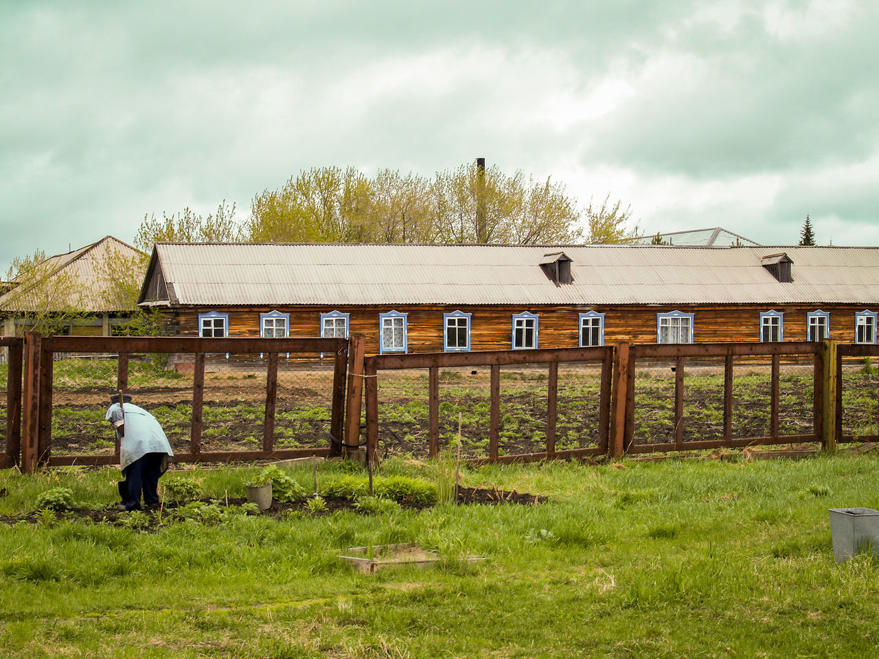 Agriculture ASIA Building Exterior Built Structure Cloud Cloud - Sky Cloudy Day Grass Grassy Green Color Growth Lifestyles Nature Outdoors Plant Rural Scene Russia Siberia Sky Streetphotography Travel Woman Working Women Worldwide_shot