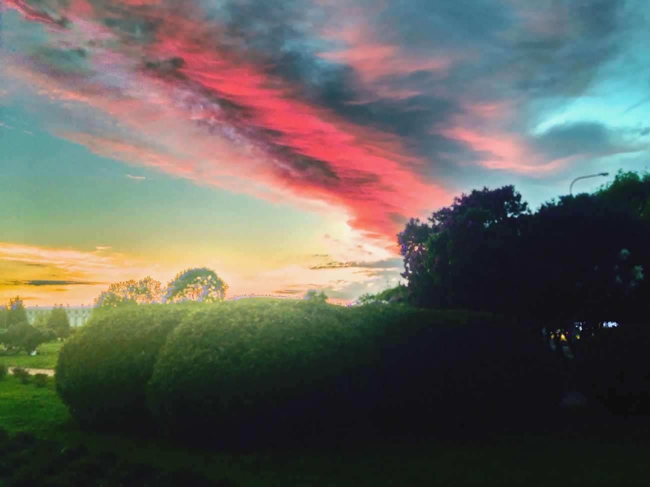 марсово поле Санкт-Петербург Питер Спб Ландшафт Spb Landscape Закат серень
