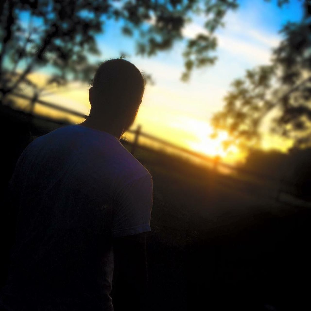 sunset, silhouette, one person, rear view, outdoors, sunlight, tree, sky, one man only, men, real people, nature, only men, day, adult, adults only, people