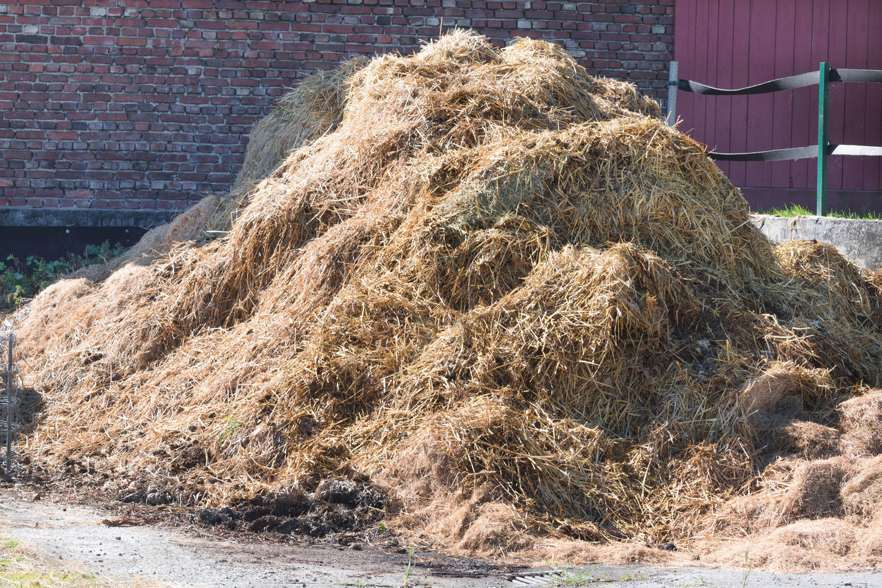 hay, bale, outdoors, building exterior, day, agriculture, built structure, architecture, haystack, hay bale, no people, rural scene, nature