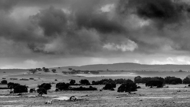 The fall is coming Alentejo Alentejo,Portugal Blackandwhite Cloud - Sky Clouds And Sky EyeEm Best Shots Igers Igersportugal Landscape_Collection Plains Portugal Portugaldenorteasul Portugaligers Évora