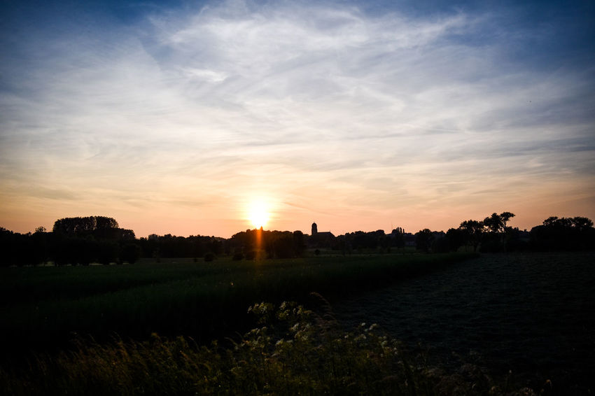 stunning sunset Agriculture Beauty In Nature Day Field Grass Landscape Live For The Story Nature No People Outdoors Rural Scene Scenics Silhouette Sky Sun Sunlight Sunset Sunset #sun #clouds #skylovers #sky #nature #beautifulinnature #naturalbeauty Photography Landscape [a:1286387] Tranquil Scene Tranquility Tree_collection  Sommergefühle Green Color