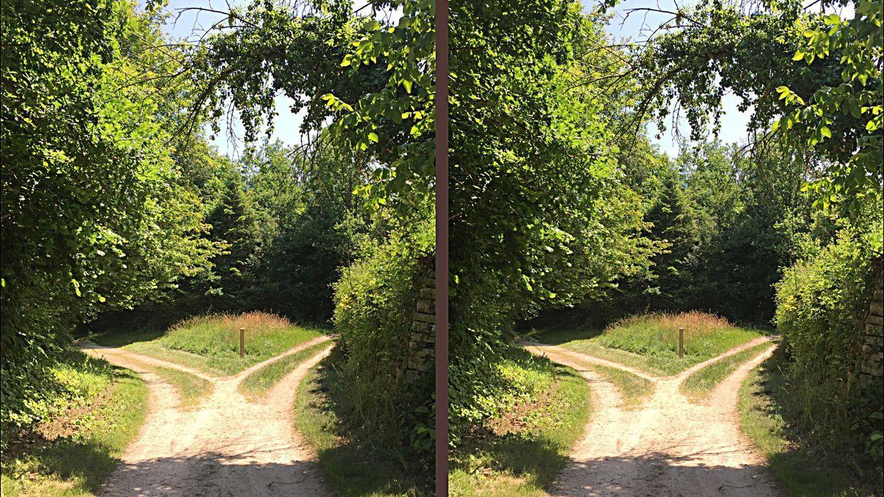 Lors du Passage vers l'Eternité, deux Chemins se présentent à Nous... 👿😇 L'ÂME du SAGE Connaît la bonne voie... .. .. ... Paysage Cross Eyes Relief Crosseyes 3D Philosophie Réflexion Personnelle STEREOGRAMME Balade Charente